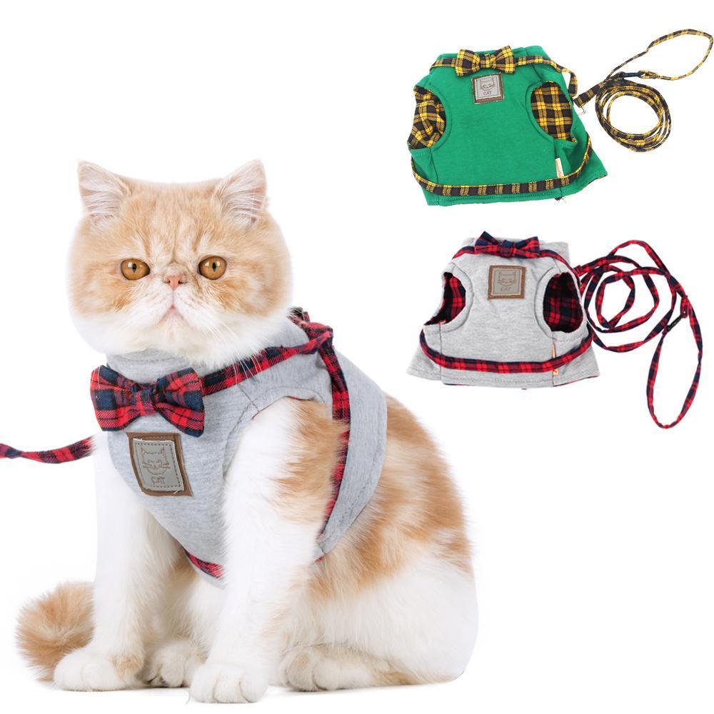 Costume et laisse pour chats et chiens