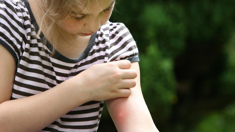 enfant et les moustiques